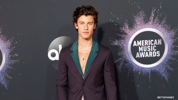 Shawn Mendes on a red carpet.