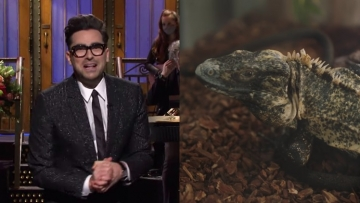 Dan Levy in a diptych with an iguana.
