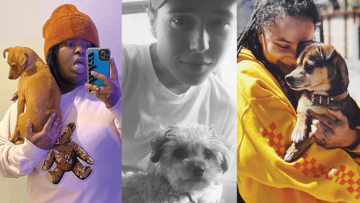Chika, Elliot Page, and Sasha Lane with their dogs