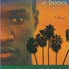 17. A Small Gathering of Bones, Patricia Powell (1994)