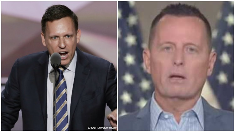 Study finds nearly half of queer Republicans wish they were straight. Peter Thiel and Richard Grenell pictured.