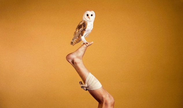 Ryan McGinley Looks at Animals Instead of Boys