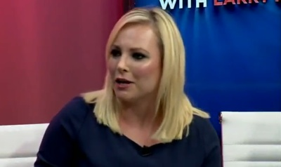 Do You Care About Meghan McCain's Vagina?