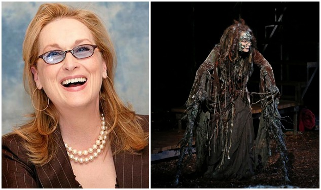 Will Meryl Streep Be the Best Witch Ever?