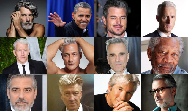 25 Silver Foxes