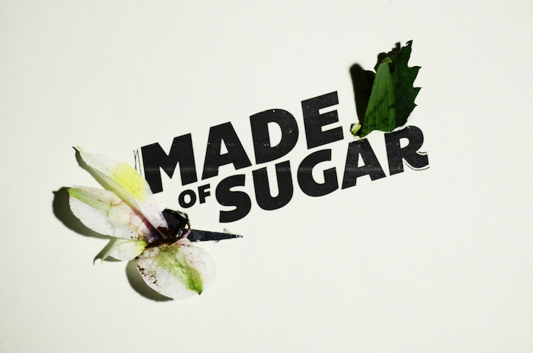 made-of-sugar-poster.jpg