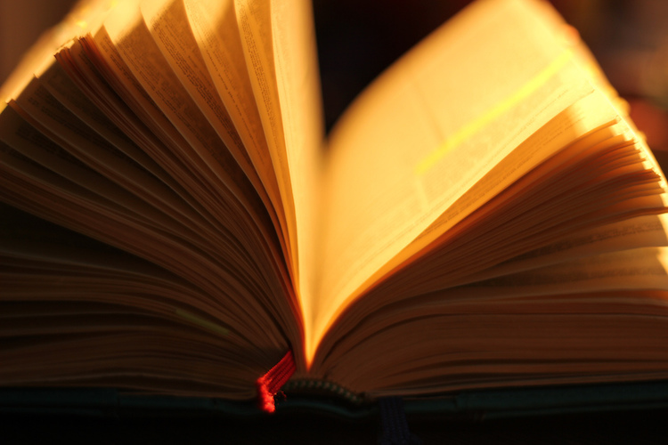 Open book dictionary
