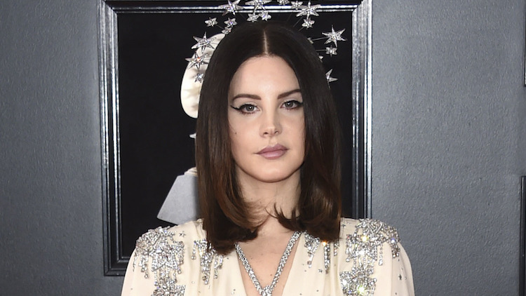 Man Arrested For Lana Del Rey Kidnapping Plot