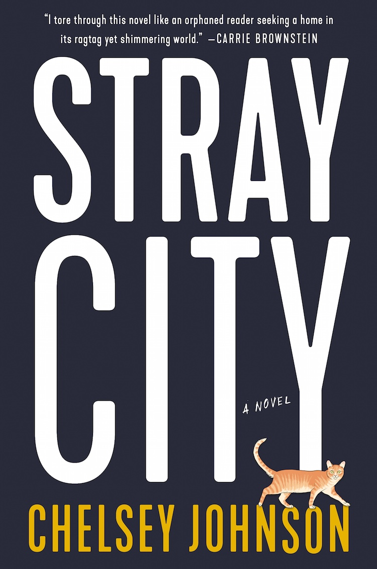 Stray City Cover