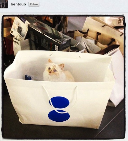 Karl Lagerfeld S Cat Has A Better Life Than You