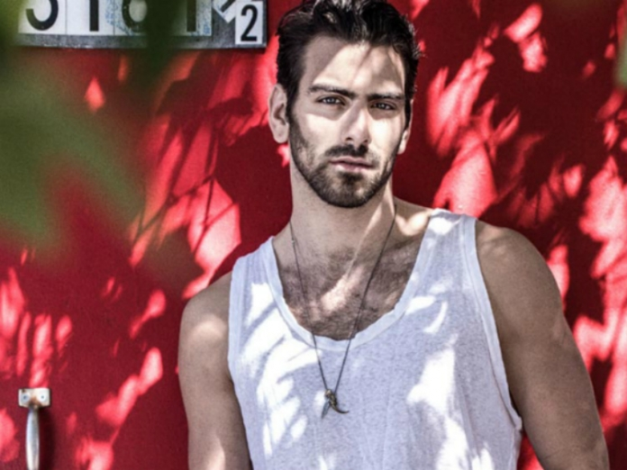 3 Things Nyle DiMarco Needs in a Boyfriend (or a Girlfriend)