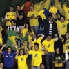 Brazilian Volleyball Fans