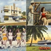 20 Vintage Postcards From Miami Vacations Past